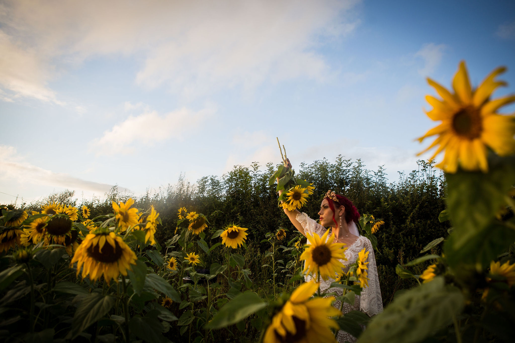 sunflower themed wedding - unconventional wedding - sunflower wedding - autumn wedding - alternative wedding planning - bride in a field of sunflowers