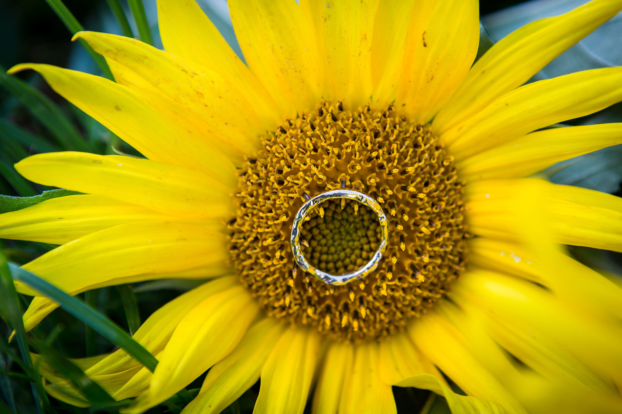 sunflower themed wedding - unconventional wedding - sunflower wedding - autumn wedding - alternative wedding planning - handmade wedding ring - unique wedding ring
