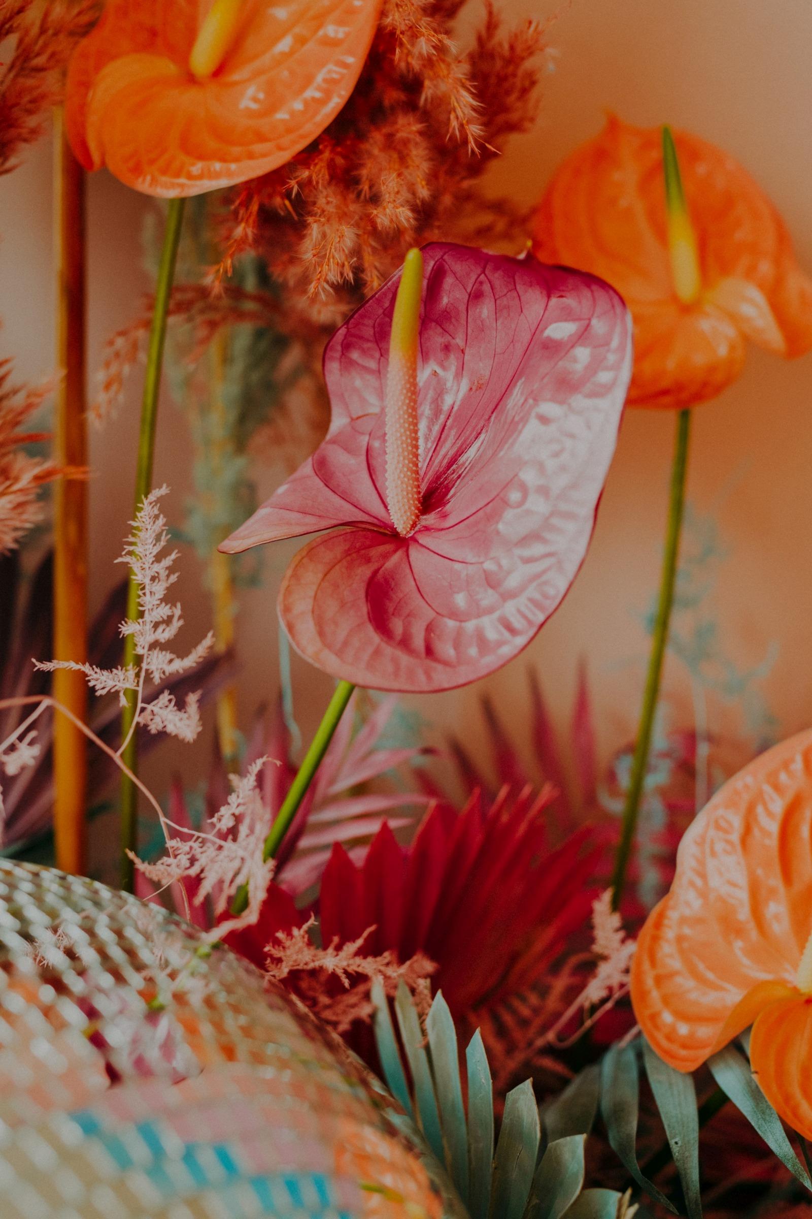 colourful pastel wedding - unconventional wedding - alternative wedding - unique wedding flowers - colourful wedding flowers - alternative wedding flowers