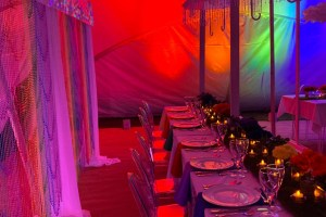 Medici Design Weddings And Events - Unconventional Wedding - 2