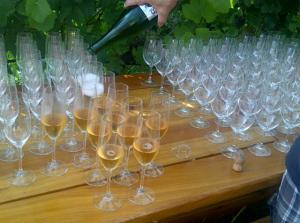 Sparkling wine at Backyard Vineyards