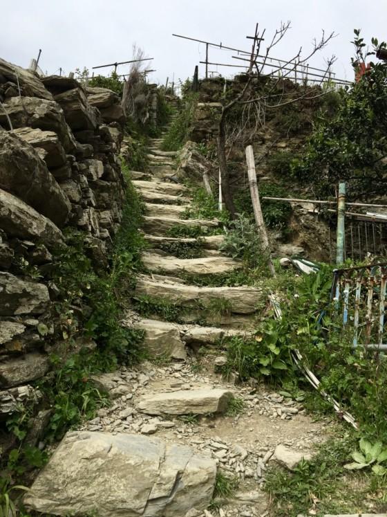 path up