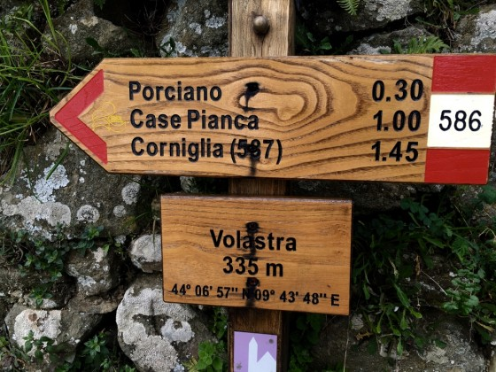 volastra sign
