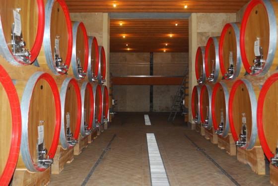 new cellar