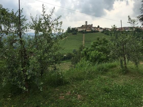 Castiglione Faletto