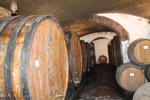 200 Year Old Cellars -- Slavonian and French Oak Barrels
