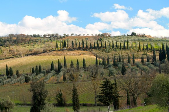 Breathtaking vistas surround Montalcino