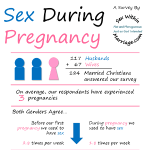Sex During Pregnancy Infographic