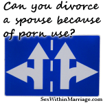 Can you divorce a spouse because of porn use