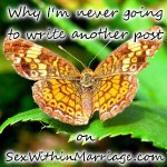 why-im-never-going-to-write-another-post-on-sexwithinmarriage-com-card