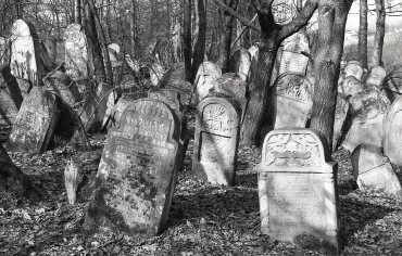 Tombstones (some painted) in the Lesko Jewish Cemetery. 1992
