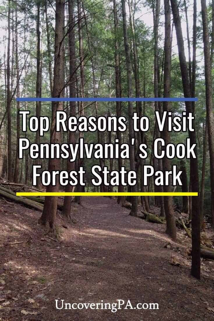 Top reasons to visit Cook Forest State Park in Pennsylvania