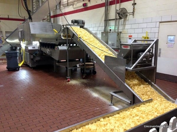 Fresh Martin's Potato Chips move along the conveyor belt getting salted and cooled at the Martin's Potato Chip Factory Tour.