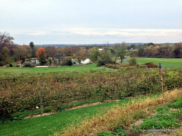 The beautiful grounds of the Vineyard at Hershey and the Brewery at Hershey.