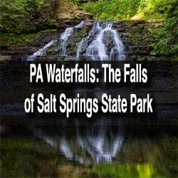 Waterfalls-of-Salt-Springs-State-Park-in-PA