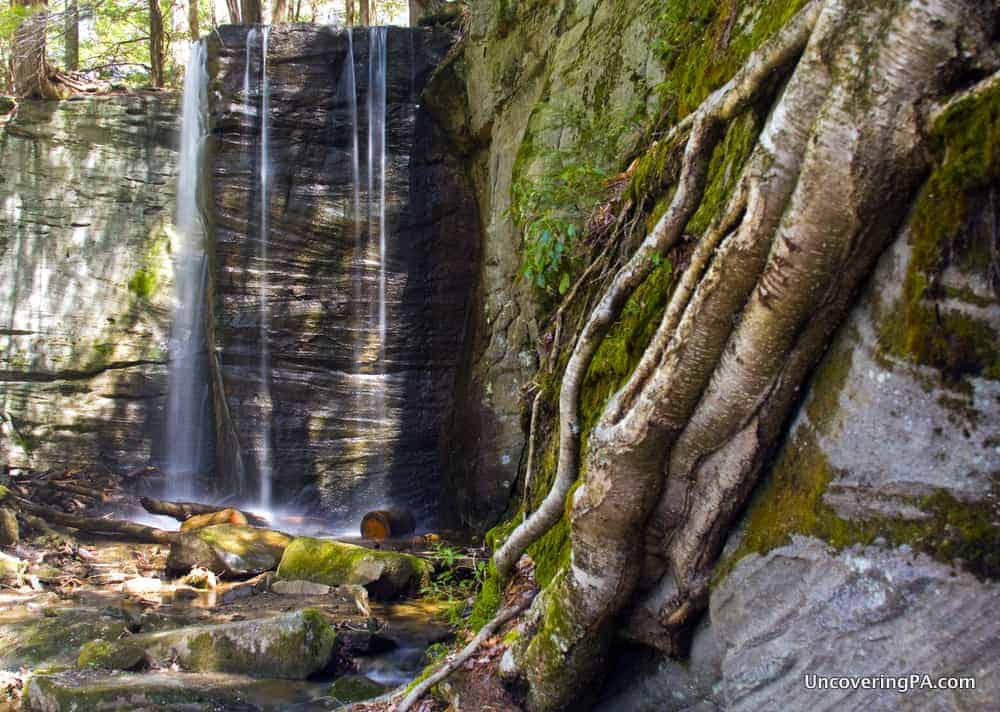 Pennsylvania Waterfalls: How to Get to Hector Run Falls