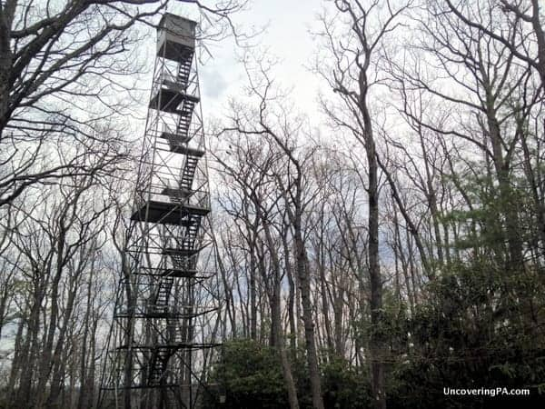 Things to do in Cook Forest - Fire Tower