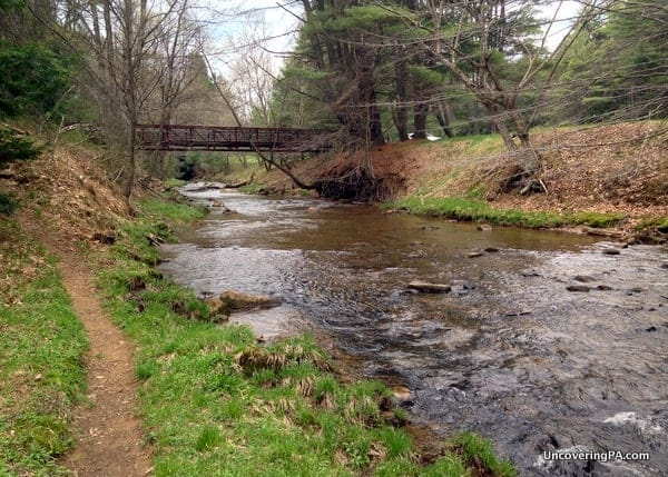 Hiking in Cook Forest State Park in the Pennsylvania Wilds