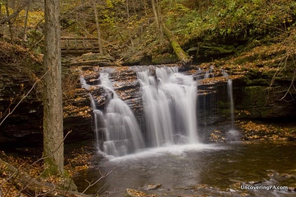 Wyandot Falls in Ricketts Glen State Park
