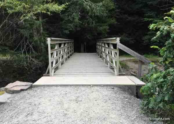Bridge over Fall Brook Salt Springs State Park in Pennsylvania