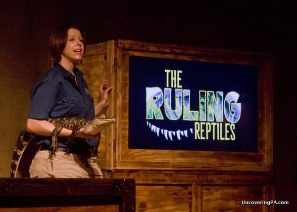Ruling Reptiles at Clyde Peeling's Reptiland