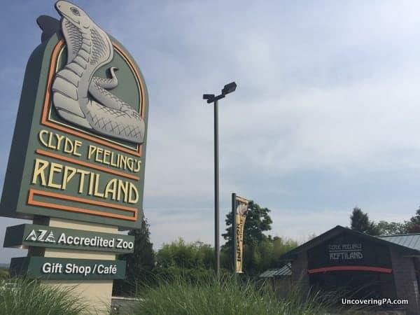 Visiting Clyde Peeling Reptiland near Williamsport, PA