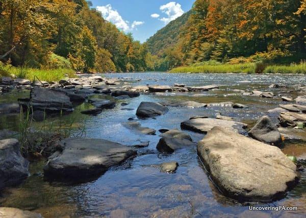Fall at Pine Creek Gorge below Turkey Path