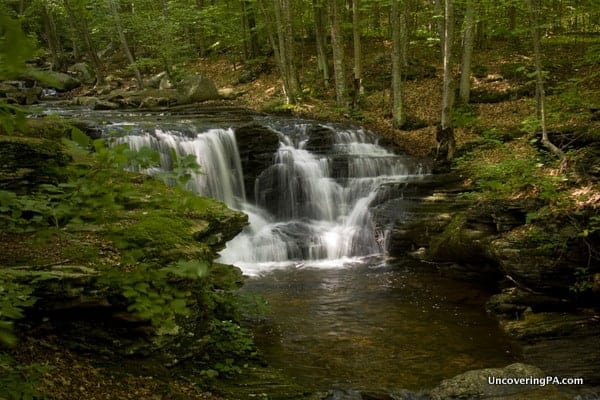 Miners Run Falls in Loyalsock State Forest Pennsylvania