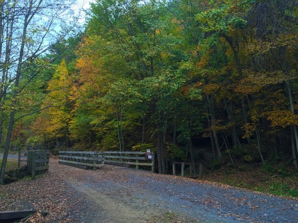 Uncoveringpa Tips For Biking The Pine Creek Rail Trail Through