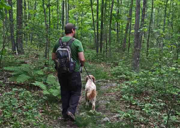 Hiking in Shuman Point Natural Area in Hawley, Pennsylvania