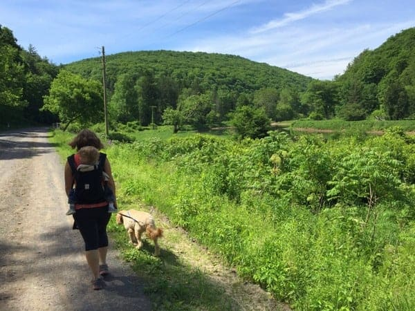 Walking the Pine Creek Rail Trail near Wellsboro, PA