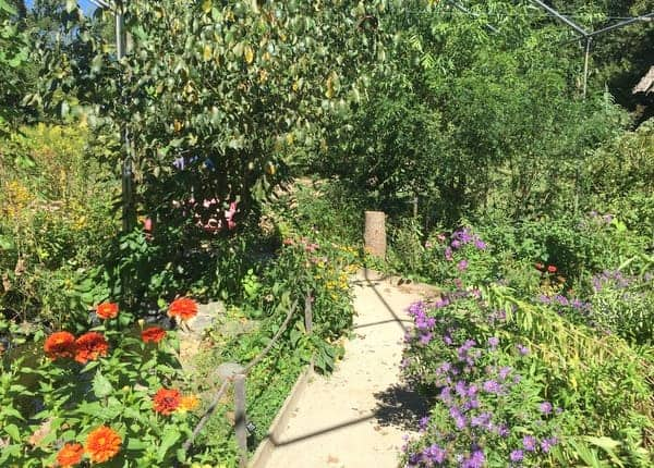 A garden at Tyler Arboretum in Delaware County, PA