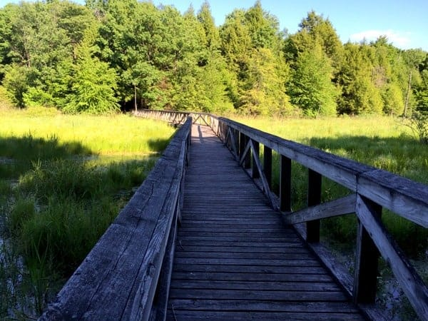 Hiking the Tsuga Trail at The Erie National Wildlife Refuge near Meadville, PA.