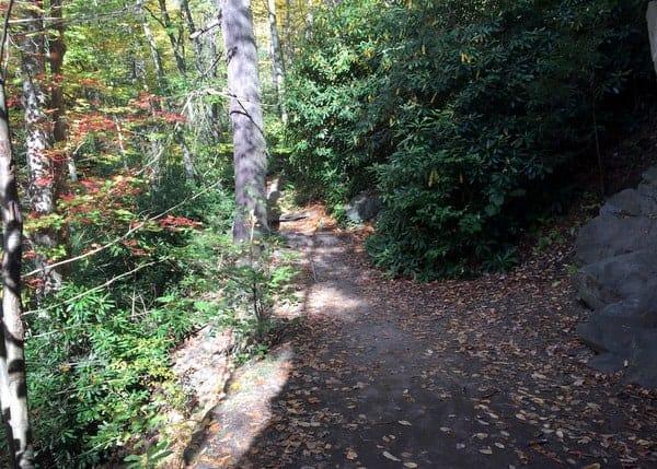 Trail in Glen Onoko in Carbon County, PA