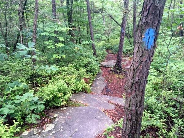 Hiking at Seven Tubs Recreation Area in northeastern Pennsylvania