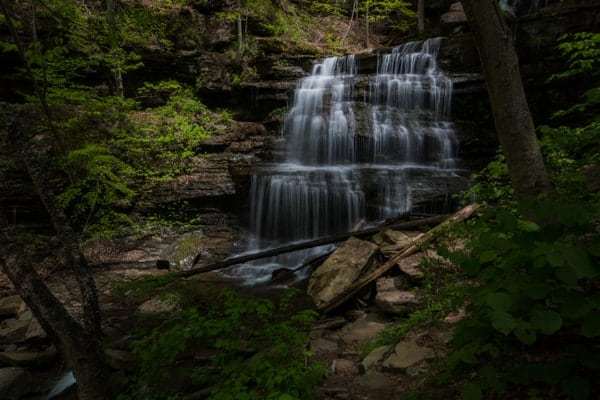 Things to see along the Pennsylvania Grand Canyon: Waterfalls of Leonard Harrison State Park