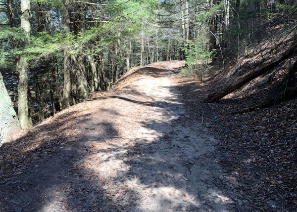 Where is the trail to Rattlesnake Falls in Pinchot State Forest, Pennsylvania