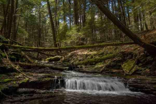 Rapp Run Falls in the Pennsylvania Wilds