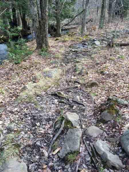 Pinchot Trail to Choke Creek Falls in Lackawanna County, Pennsylvania