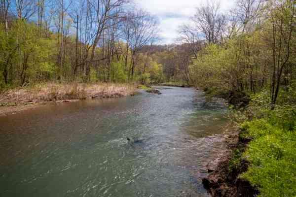 Raccoon Creek in the spring