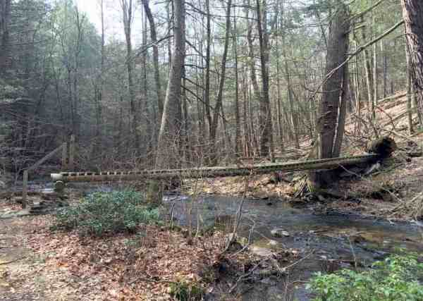 Bridge on the Jarrett Trail in State Game Lands 53