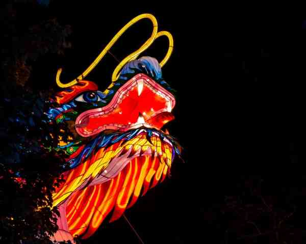 Dragon at the Philadelphia Chinese Lantern Festival