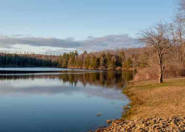 Sones Pond in Loyalsock State Forest
