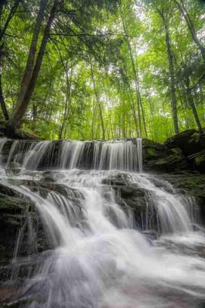 Allegheny National Forest Waterfalls: Logan Falls