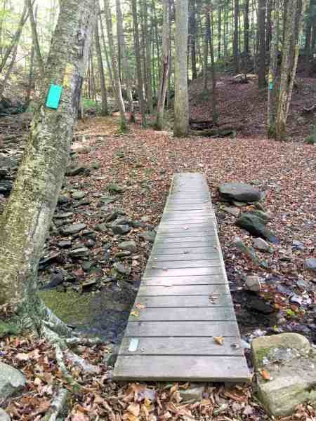 Hiking the Double Run Nature Trail in Sullivan County, PA