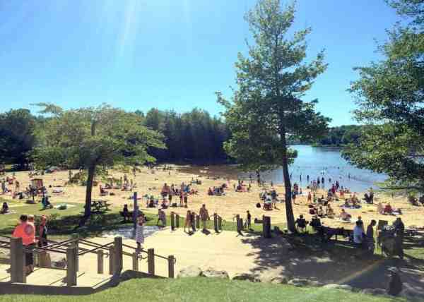 Beach at Ricketts Glen State Park in Pennsylvania