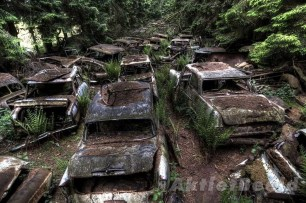 chatillon-car-graveyard-10[2]