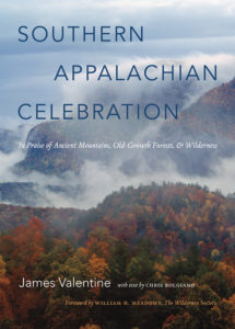 Southern Appalachian Celebration, by James Valentine
