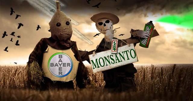 Keine Krebs-Gefahr durch Pestizide