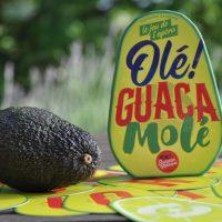 [Test] Olé Guacamolé. Vamos à l'apéro !
